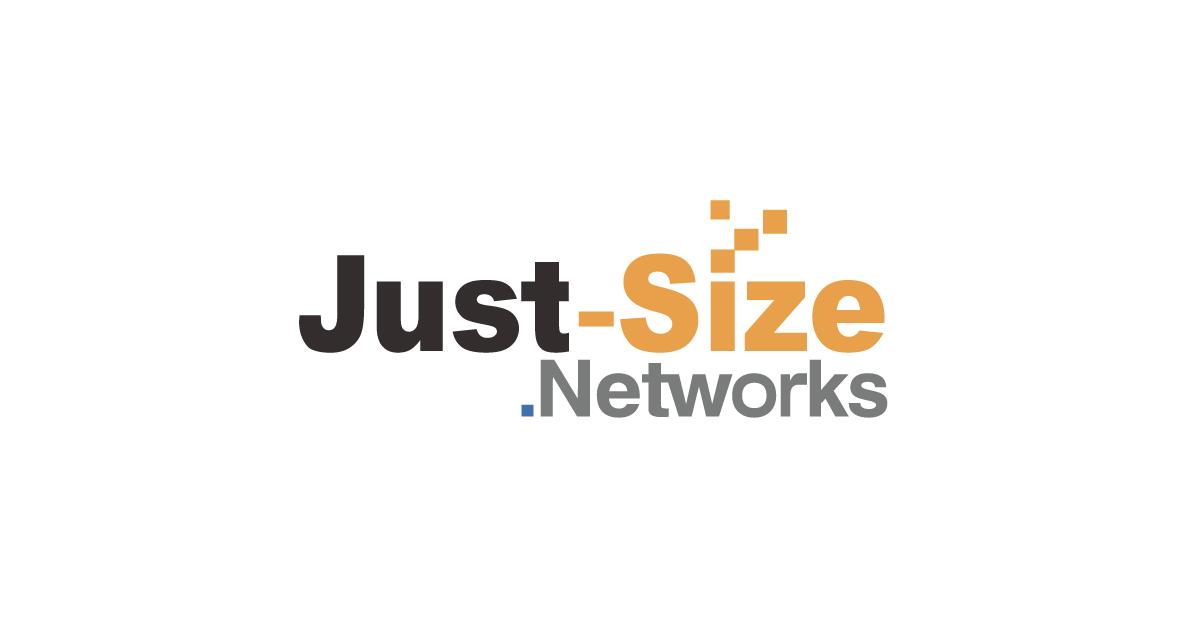 ジャストサイズ レンタルサーバーの代わりになる代替サービス/似ているサービス一覧 1