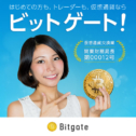 Bitgate(ビットゲート)