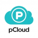 pCloud Transfer